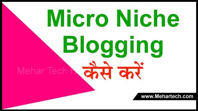 Micro Niche Blogging क्या है